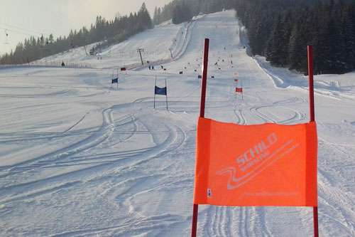 Schild Skiracing News